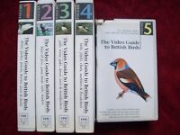 The Video Guide to British Birds