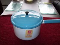 White and Blue Enamell Stew Pan