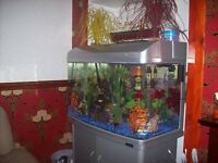 complete aquarium sytem