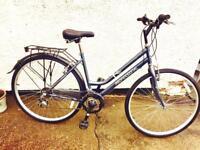 Professional Regent Unisex Bike