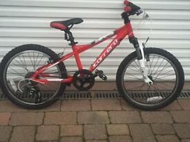 Carrera blast mountain bike 20inch
