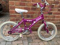 Raleigh girls bike