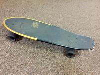 Globe skateboard (fishboard)