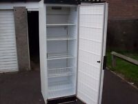 catering fridge with selving in side and clean and tidy in white and very tall