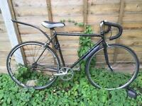 Raleigh racing bike, only for £100