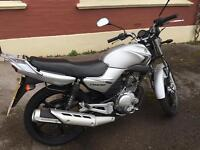 2009 Yamaha YBR125 (12 Month MOT)