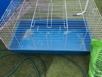 Guinea pig cage plus bag hay, small amount sawdust
