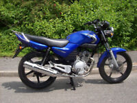 YAMAHA YBR 125 2008 REG full 12 months m.o.t excellent clean condition runs and rides perfect