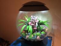Biorb halo 30 grey aquarium fish tank