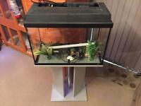 60L fish tank with stand