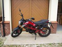 Kymco K Pipe 50cc Motorbike