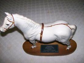 Champion Welsh Mountain Pony