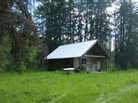 Beautiful cabin on 142 acres for sale