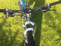 Giant anthem mountain bike