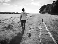 Dog Walker, Dog and Cat Sitter And Pet Care in Bromley & Orpington