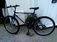 Mans Townsend mountain bike