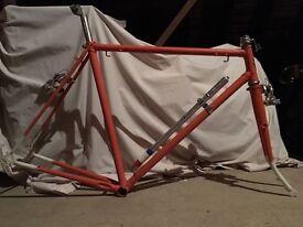 Vintage Carlton Lugged Steel Racing Bike Frame