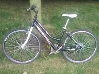 Vertigo bike