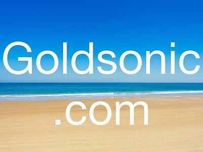 Goldsonic Com   3 4 5 Letter Business  Com Website Domain Name At Godaddy