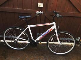 Apollo city bike