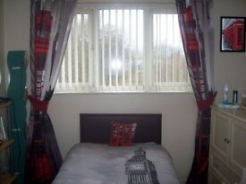 london scene single duvet. pillow and matching curtains size 66x90