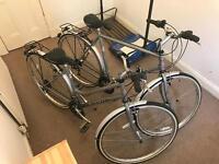 Falcon Bikes (boy And girl)