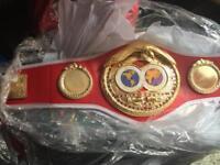 3/4 sized IBF world title boxing championship belt