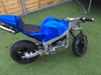 49cc midi moto