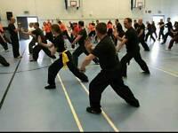 Beginners Kung Fu