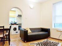 Beautiful Ground Floor Double Bedroom Flat with Garden NW10 2 SU