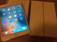 iPad mini 4 64GB Gold cracked screen