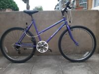 Raleigh calypso 6 speed mountain bike