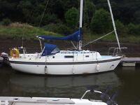 Colvic sailor 26, sailing boat, yacht.