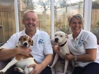 Part time dog loving volunteers wanted.