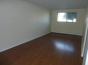 BRIDGEWATER'S BEST 2 BDRM  LOWER LEVEL  AVAILABLE  FEBRUARY 1ST