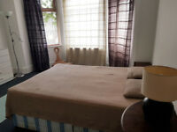 Large sunny single room with a dbl bed to rent for a non smoking person