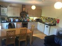 2 Large double rooms in bright city centre apartment!!!