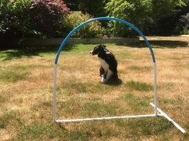 Hoopers Dog Agility Hoops in various colours - only 65p post for each extra hoop