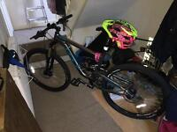 MOUNTAIN BIKE *excellent condition*