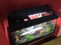 Fish tank for sale slough pickup