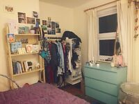 Room to rent in lovely shared house in Horfield (just off Glos Rd) *no agency fees*