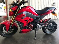 Honda msx 125 grom 66 plate warranty modified