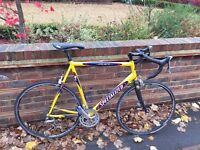 Specialized Allez 18speed Road Bike XXL63cm Liteweight Alloy Frame/Carbon Forks Shimano 105 Groupset