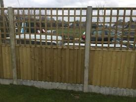 🌲High Quality Tanalised Trellis Fence Panels