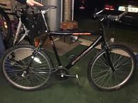 Mens 'Townsend' Evolution Bike