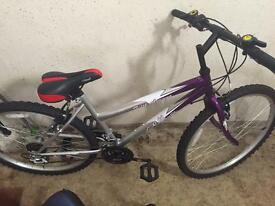 Ladies girls mountain bike