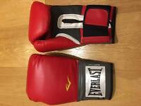 Everlast 16oz boxing gloves