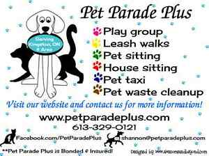 PET PARADE PLUS- PROFESSIONAL DOG WALKING & PET SITTING SERVICE