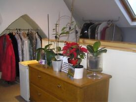 Room to rent in family home Redland