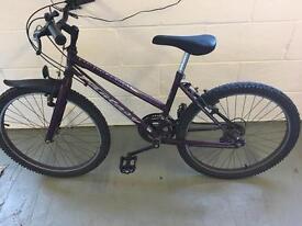 Coventry Eagle Mountain Bike